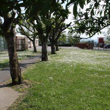 Ysgol Brynffordd School