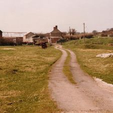 An image of the pet cemetery as it was originally - Coetia Mawr