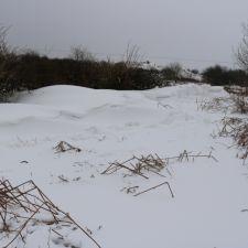 snow_mar18